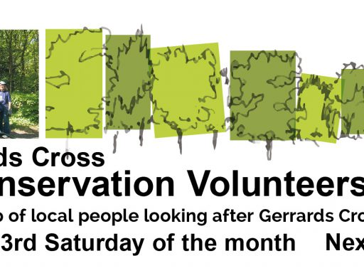 Image for This Saturday, 15th September – Join the GX Conservation Volunteers